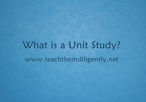 What is a Unit Study?