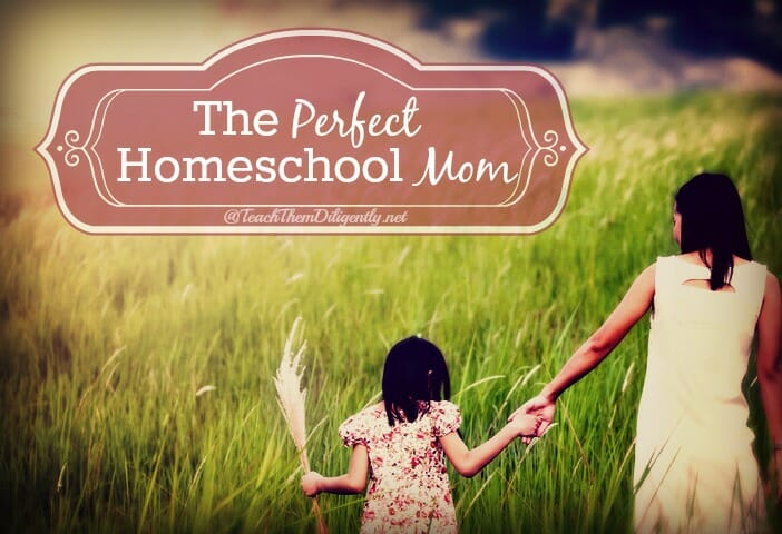 The Perfect Homeschool Mom